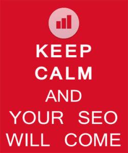 manten la calma y tu posicionamiento web llegará